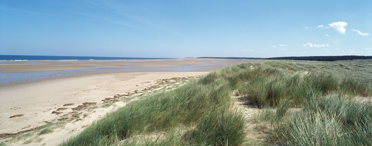 Nearby Holkham Beach